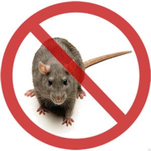 Засоби від мишей і побутових комах