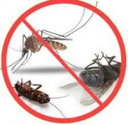 Засоби проти побутових комах